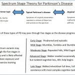 Spectrum Stage Theory Seeks a Better Understanding of Parkinson's